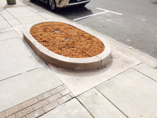 curbed planter at Excelsior & Grand